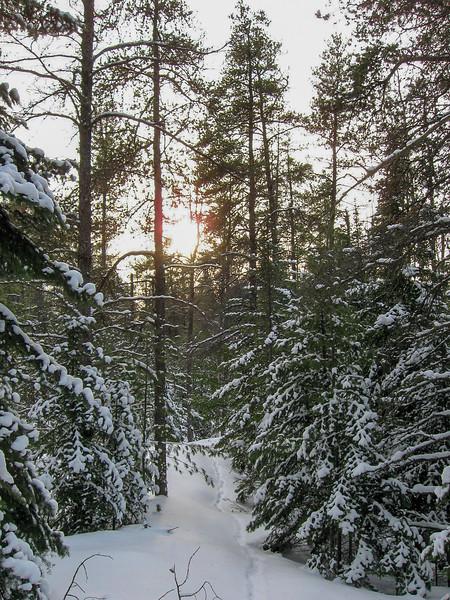 Crow Lake Pathway