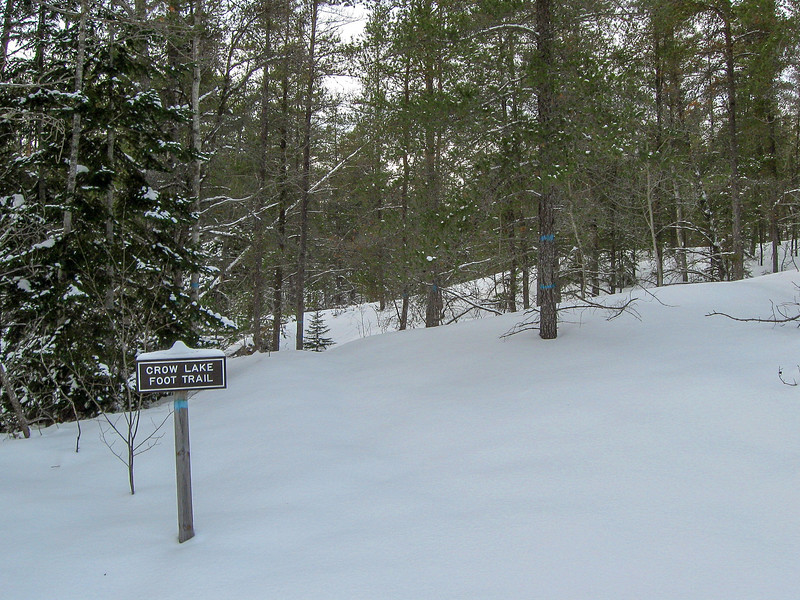 Less than a quarter mile south of the Big Knob trailhead is one of the trailheads for the Crow Lake Trail...