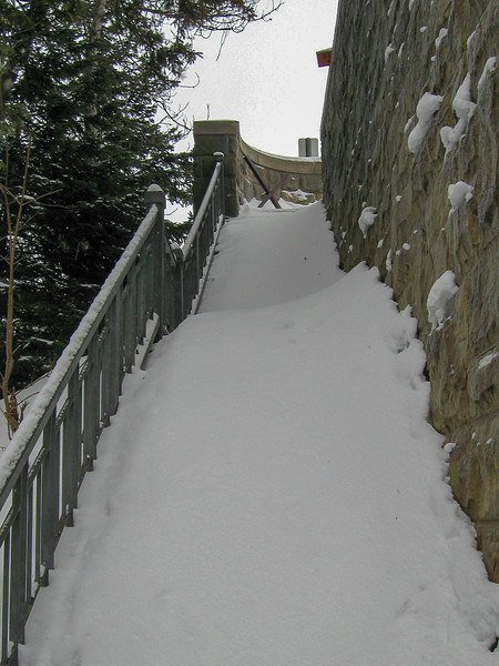 Cut River Pathway (East)