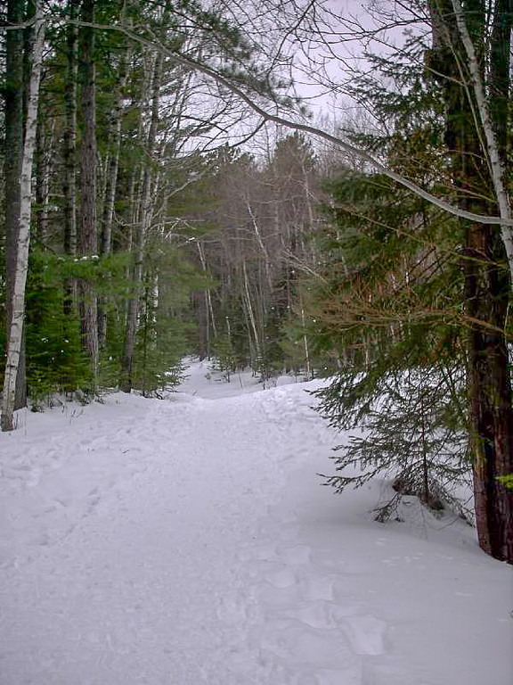 <b>Starting the Hike</b> - The trail is quite wide as it leaves the parking area. During the summer it is a dirt road.