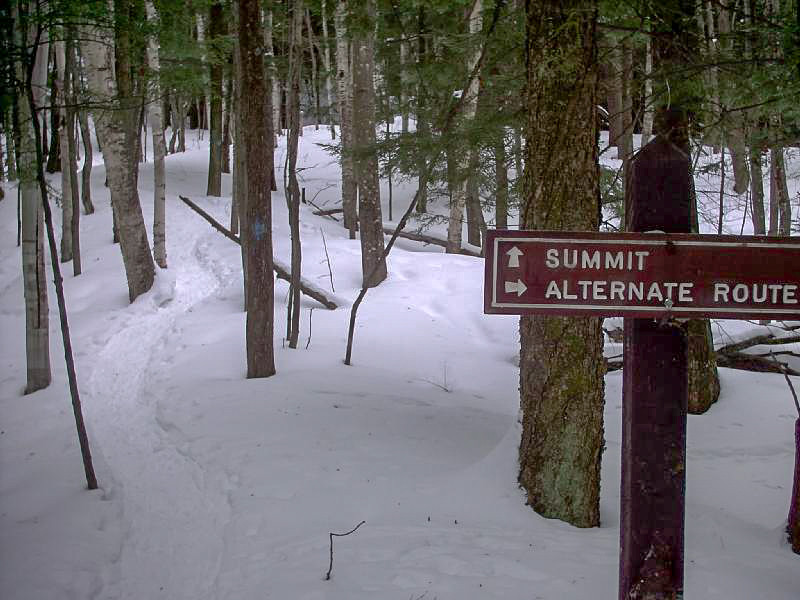 <b>A Sign!</b> - The only trail sign you'll find on the whole route is just a quarter mile from the summit. Its still a 200 foot vertical climb from this point however.
