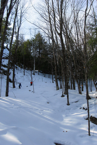 Hogback Mountain Loop Trail