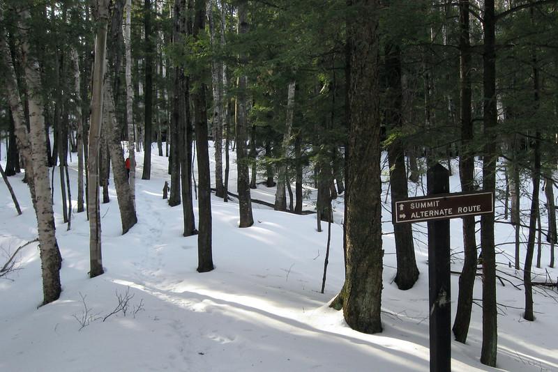 Hogback Mountain Loop Trail - Alternate Route Split