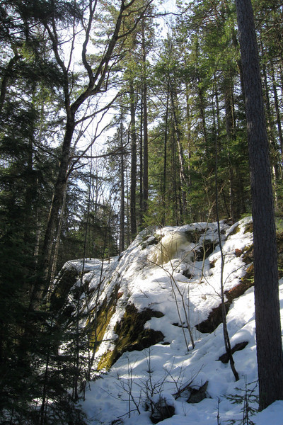 Harlow Lake Pathway