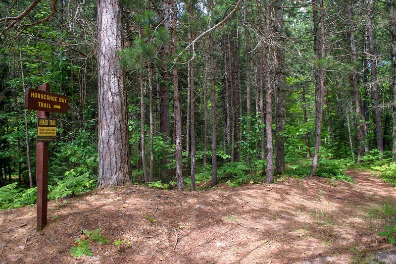 Foley Creek Campground Trailhead