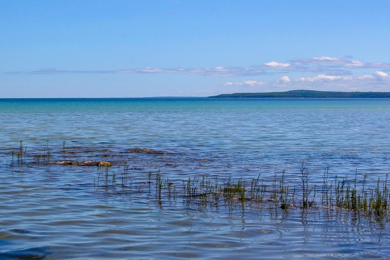 Reeds poking up through the shallows with the quiet north end of Mackinac Island beyond...