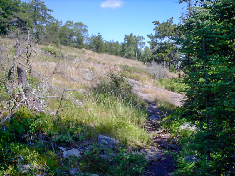 Mount Franklin Trail