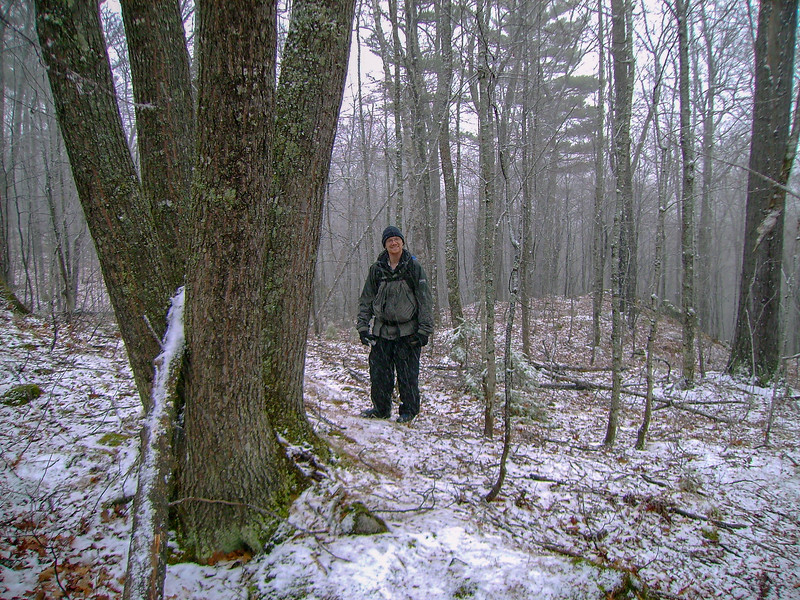 McCormick Tract Trail