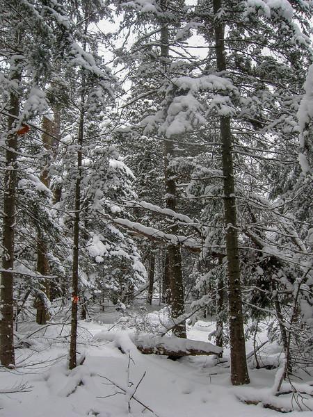 Old Range Light Trail