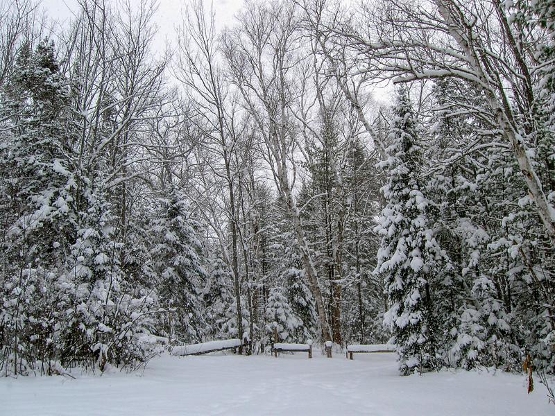 Duck Lake Trail