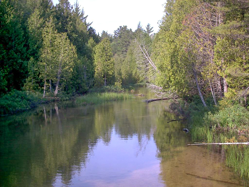 Day 3 - Beaver Creek