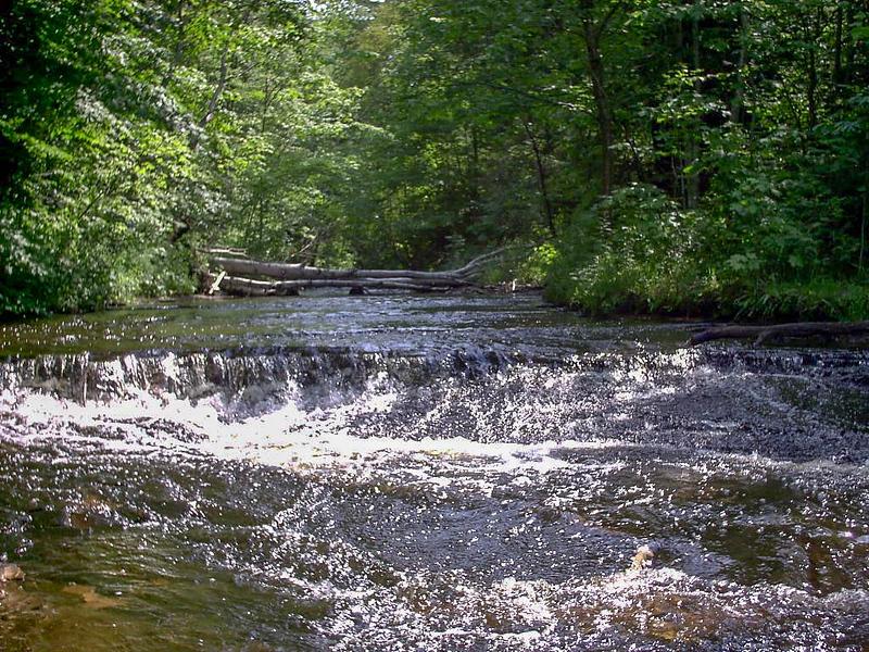 Chapel River