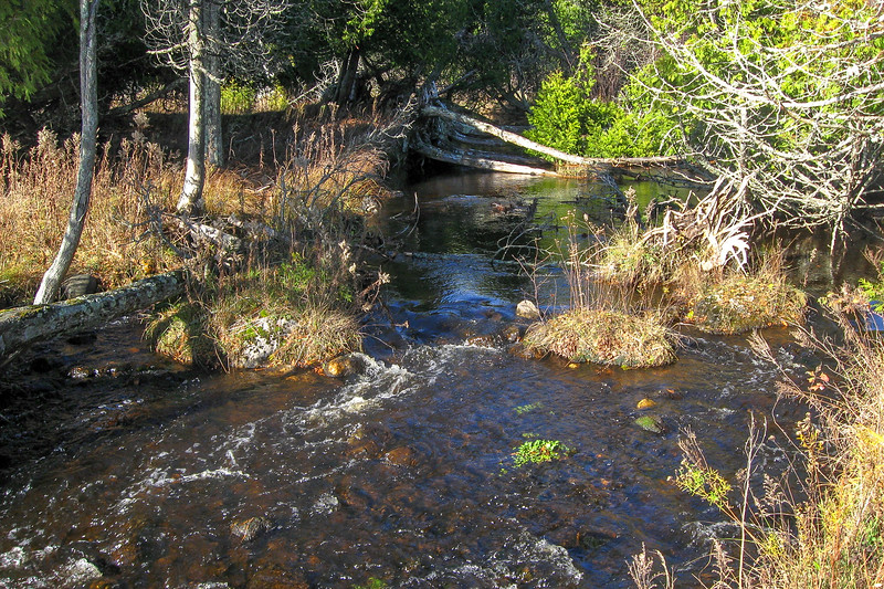 Point Patterson Creek