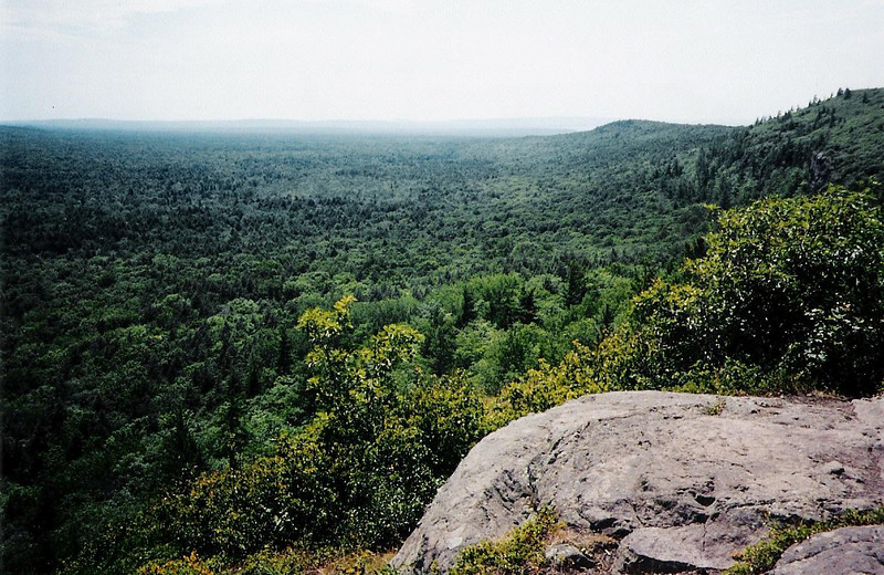 A refreshing breeze met us as we broke out of the woods after a steep climb up the escarpment. This photo is looking back down the Big Carp River valley from where we came. Lake Superior would be visible in the distance if not for the haze.