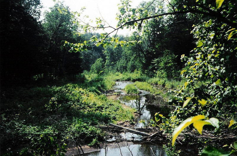 This shot shows the Carp River as it nears Lake Superior. Upstream the river is much rockier and includes numerous falls such as Traders, Trappers, and Explorers.
