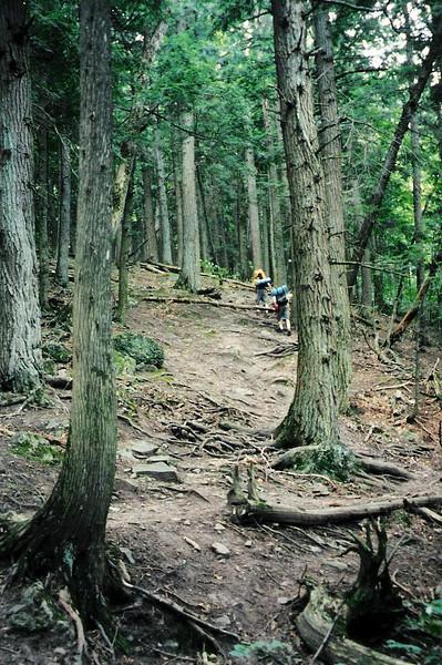 North Mirror Lake Trail