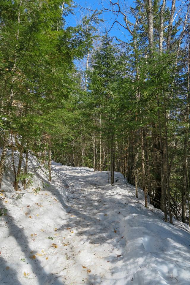 Lower Falls Winter Trail