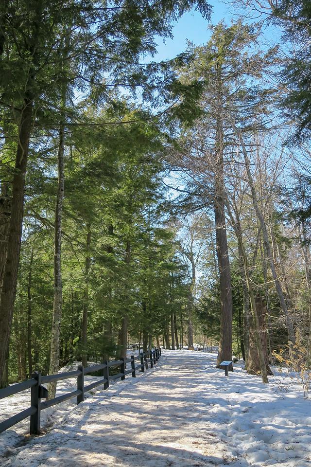 Upper Falls Trail