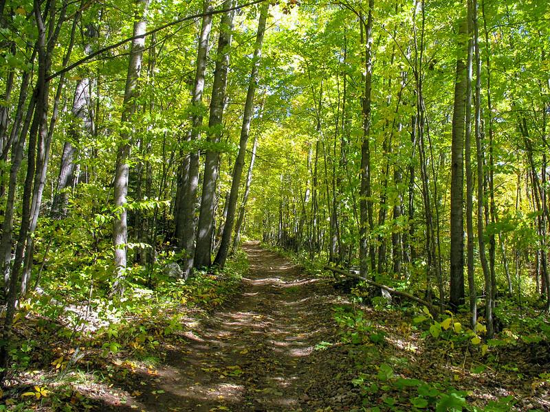 Norwich Bluff Trail
