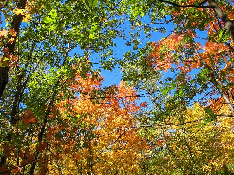 Trap Hills, Ontonagon County - Cascade Falls & Norwich Bluff