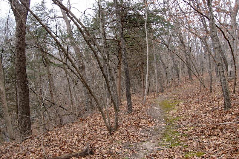 Ravine Loop Trail