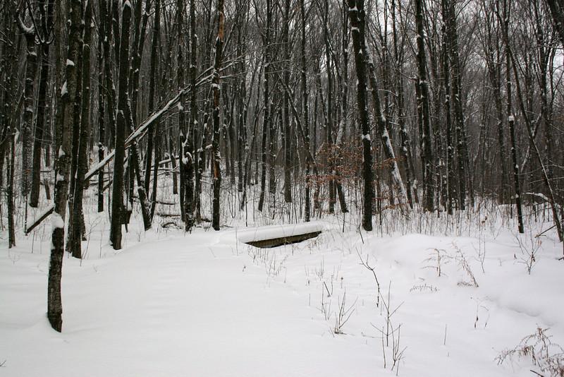Timm's Hill Trail