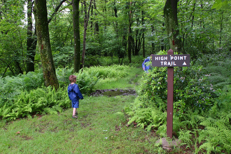 The High Point Trail leads a mile from the highway picnic area to the summit.  We were hoping the rain would hold off for another hour or so...