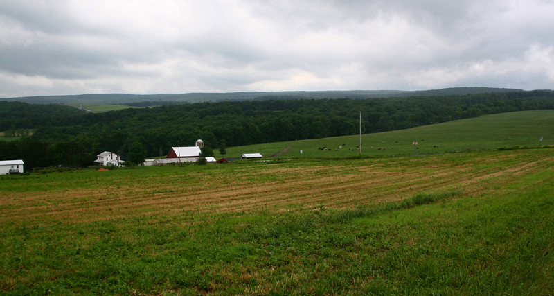 Mount Davis View