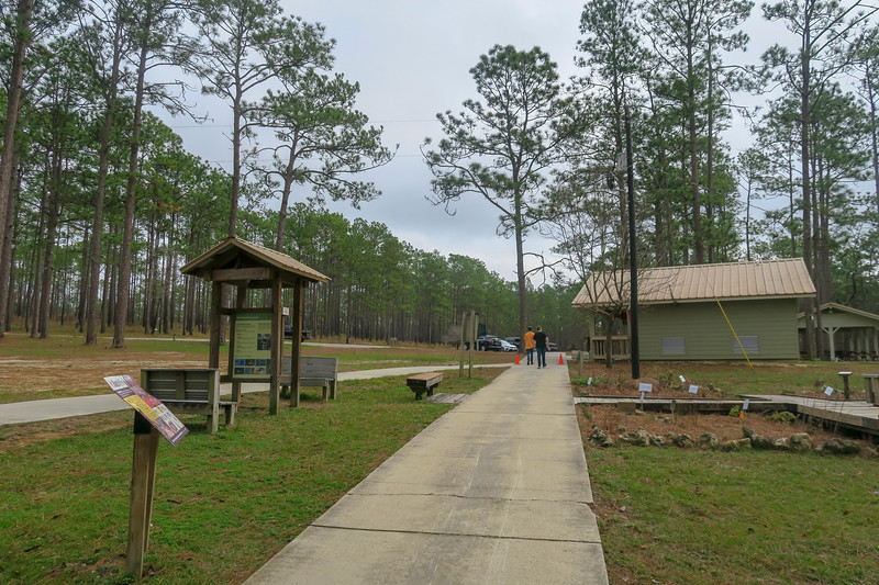 Wiregrass Trail @ Picnic Area/Waterfall Parking