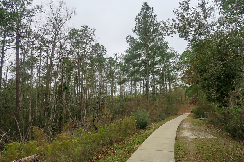 Wiregrass Trail