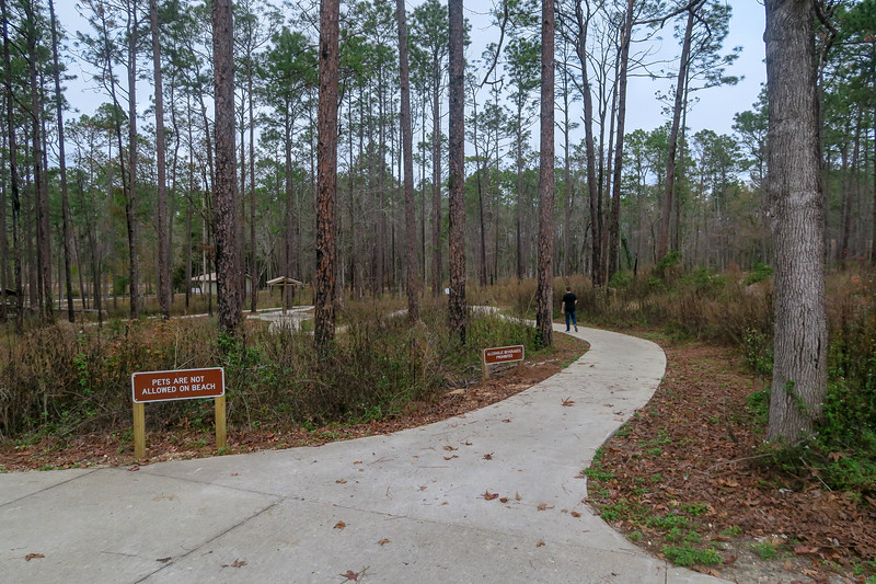Wiregrass Trail @ Beach/Lake Parking