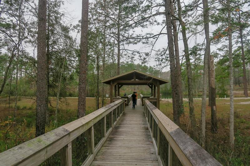 Wiregrass Trail