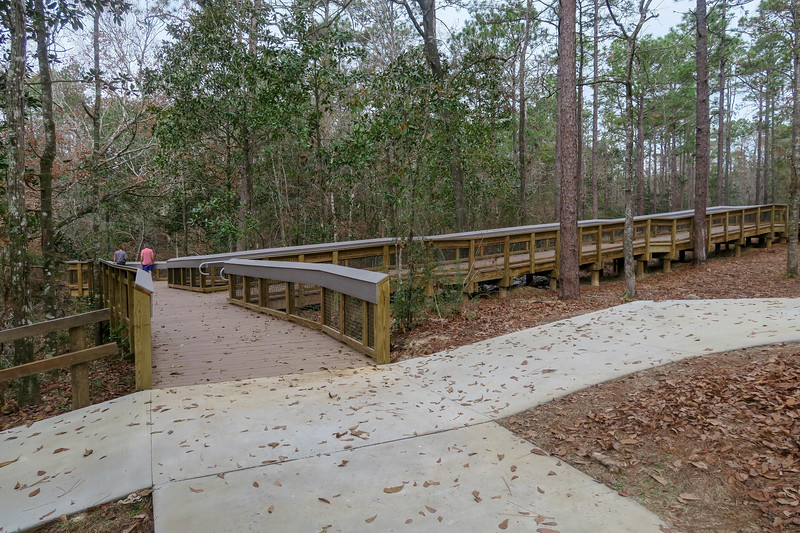 Wiregrass/Sinks Trail Junction