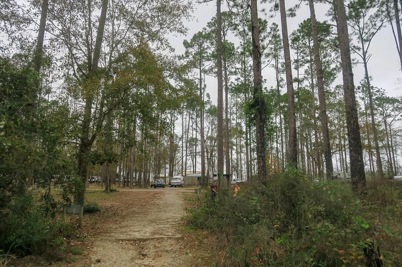 Pine Ridge Campground Trailhead