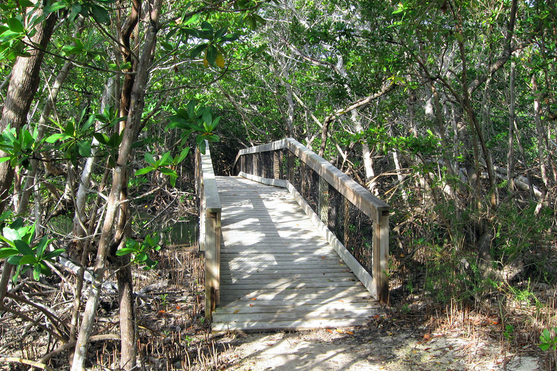 The final portion of the trail gets noticeably wetter, first requiring a bridge and then a boardwalk...