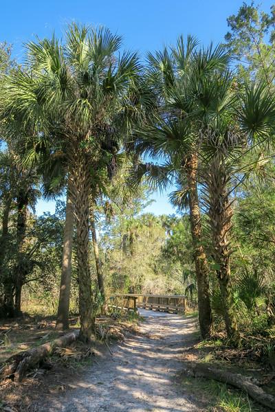 Flagler Trail