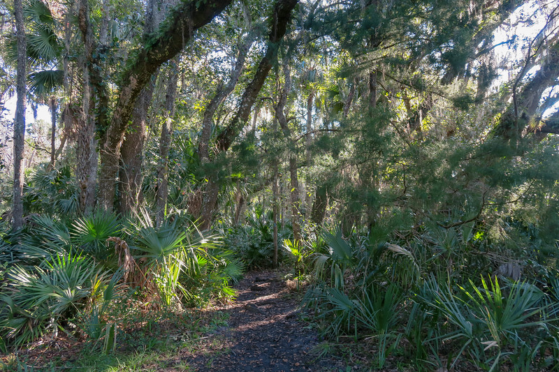 Barr Street Access Trail
