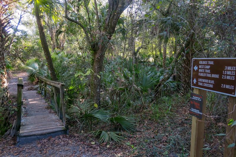 Barr Street Access/Florida Trail Junction