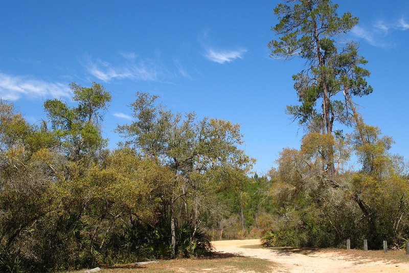 Lake Eaton Sinkhole Trail
