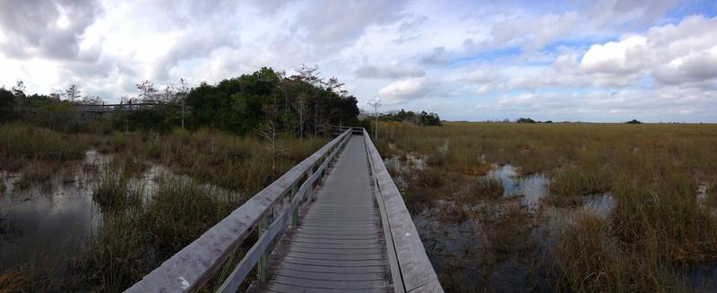 A Pa-hay-okee panorama...