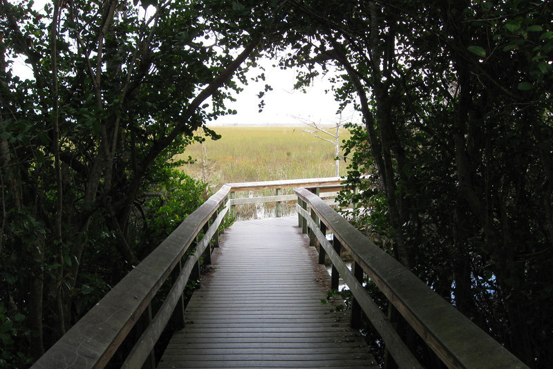This trail, though short, is drastic in its changes in natural surroundings...
