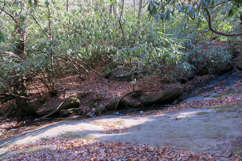 Taylor Creek -- 2,400'