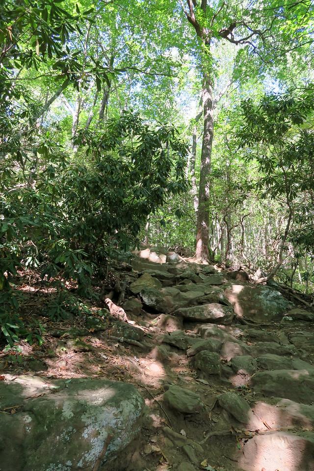 Byron Herbert Reece Trail