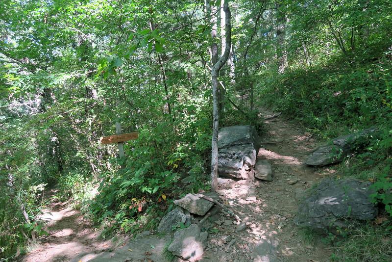 Appalachian-Duncan Ridge Trail Junction