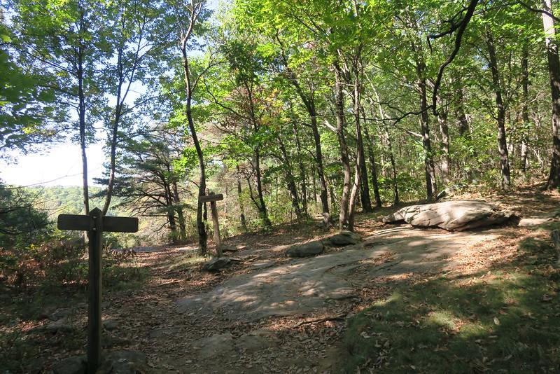 Byron Herbert Reece-Appalachian-Freeman Trail Junction