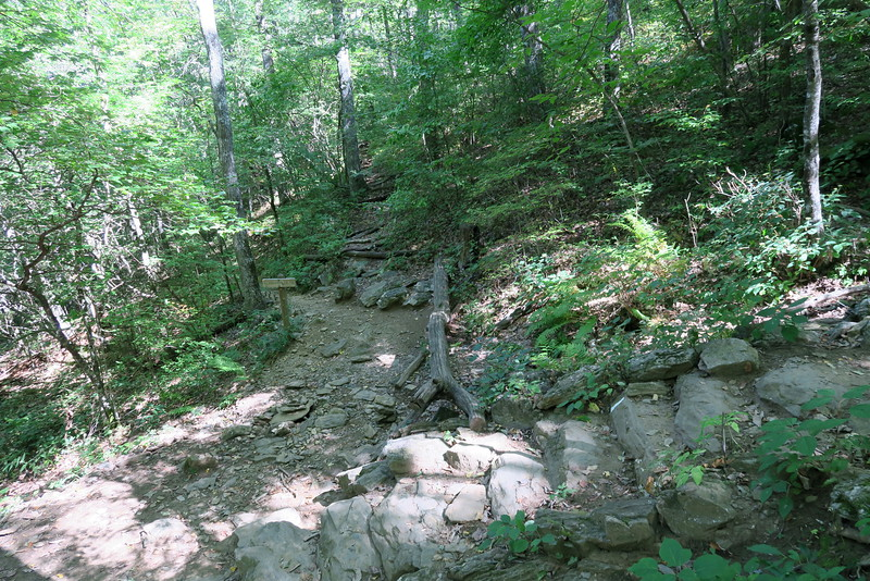Appalachian-Slaughter Creek Trail Junction