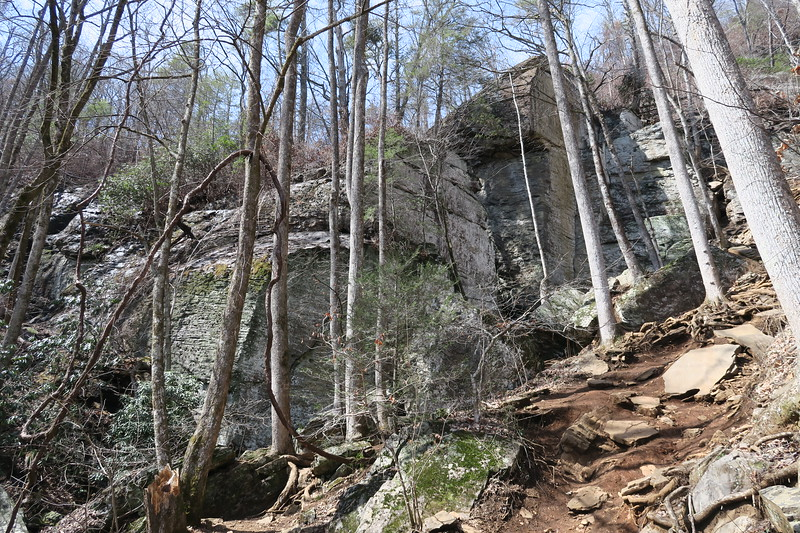 Raven Cliff Falls Trail
