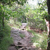 Making the last few, southernmost steps on the Appalachian Trail...