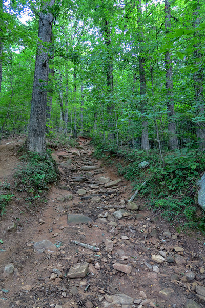 Yonah Mountain Trail -- 2,400'