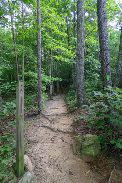 Yonah Mountain Trail -- 1,720'